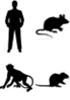 All species