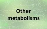 Assay kits - Other metabolisms